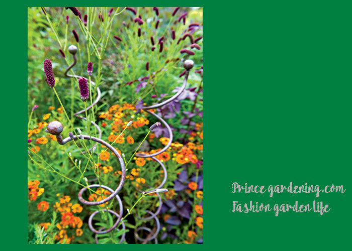 Decorative Mental Garden Plant Stakes / Garden Support Stakes With 3 Spiral  Stem